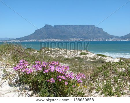 BLOUBERG STRAND, CAPE TOWN, SOUTH AFRICA