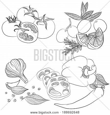 Vector line art illustration with food. Set with various vegetables. Illustration for menu cookbook or coloring book. Sketch isolated on white background
