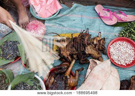 Rats At Market