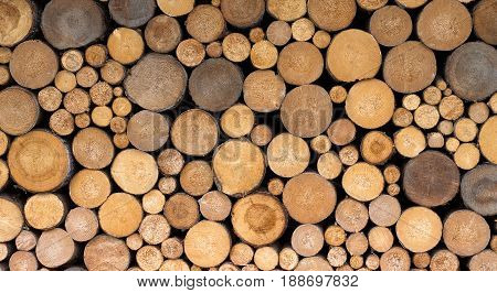 Stack of fresh lamber firewood organized near a wall.