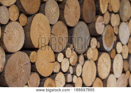 Organized stack of freshly cut pine firewood.
