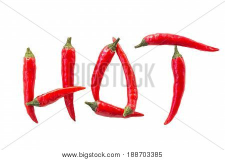 red hot chili peppers, popular spices concept - beautiful poster with decorative word HOT made of red hot chili peppers on white isolated background, top view, flat lay. Empty space for the text.