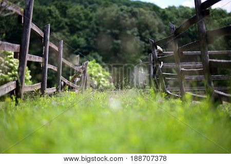 Very old wooden corral fence at summertime rural scene. Shallow depth of field