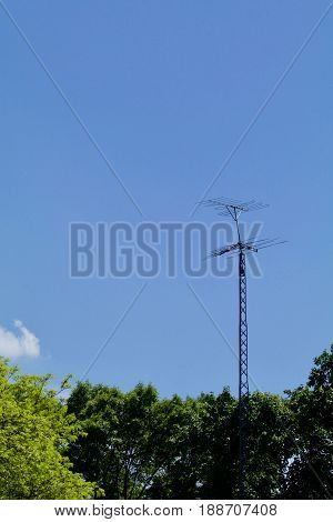 An old TV antenna appears above the trees in a vertical format.