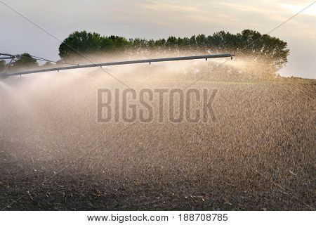 Watering of cultivated field in early spring irrigation equipment spraying water to land