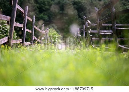 Bokeh feeling on old corral fence at ranch rural scenic summertime. Old wooden rural corral fense in meadow