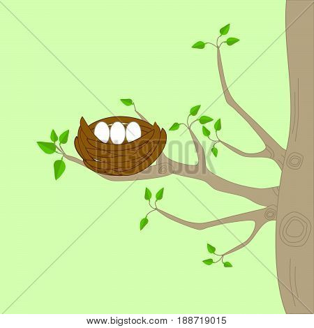 Two birds and a nest on a tree