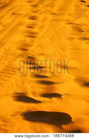 The Brown Sand Dune  Footstep  Desert