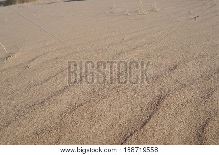 Desert sand dune surface background, selective focus