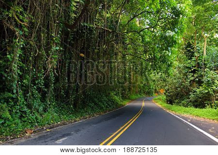 Famous Road To Hana Fraught With Narrow One-lane Bridges, Hairpin Turns And Incredible Island Views,