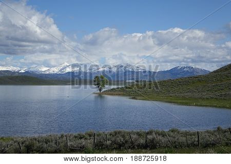 Spring time at Little Camas Reservoir in Elmore County, Idaho.
