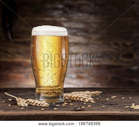 Frosted glass of beer on the wooden table.