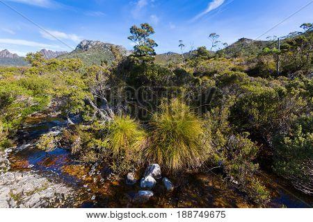 Natural stream of water running through volcanic basalt rock at Lake Lilla, part of Cradle Mountain, Lake St Clair National Park. Autumn in Tasmania, Australia
