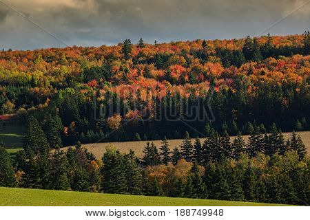 Autumn hills in rural Prince Edward Island, Canada.