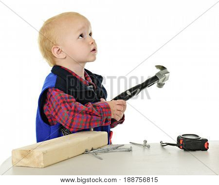 An adorable toddler with a hammer in hand, a block of wood and nails to his side. He's looking as if asking a parent if he's allowed to play with these.  On a white background.
