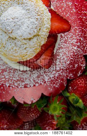 Detail of Powdered Shortcake on Tray over strawberries