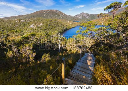 Stairs at Cradle Mountain. Elevated wooden steps with anti slip chicken wire mesh on nature trail to Lake Lilla and Dove lake at Lake Saint Clair National Park. Autumn in Tasmania, Australia.