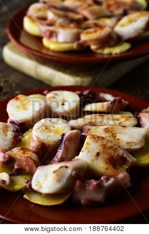 closeup of an earthenware plate with pulpo a la gallega, a recipe of octopus typical in Spain served on potatoes and seasoned with paprika