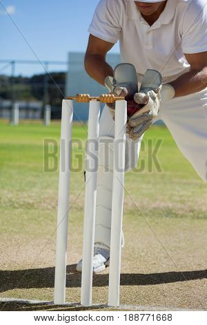 Low section of wicketkeeper catching ball behind stumps on sunny day