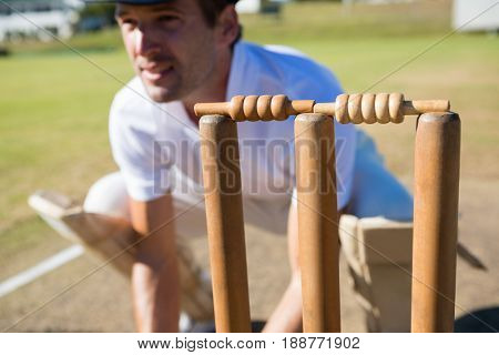 Close up of wicket keeper crouching by stumps during match on sunny day