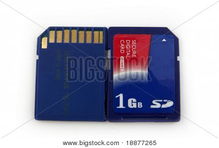 two secure digital cards