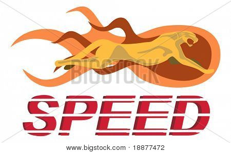 cheetah - most fast animal on the Earth. image may be use like symbol of speed.