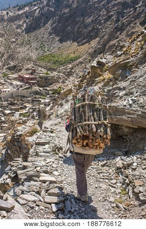Marpha village, Nepal - May 14, 2016: Nepalese people colect wood near Marpha village in Lower Mustang district, Nepal