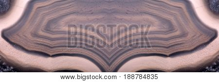 background with dark brown agate structure