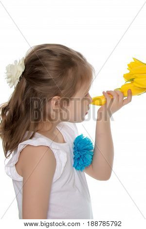 Adorable little girl smelling a bouquet of yellow tulips. Close-up.Isolated on white background.
