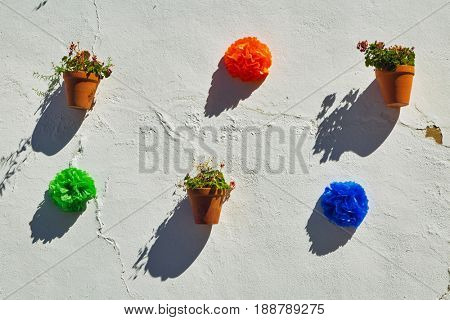 Flowerpots and colorful flower on a white wall. Ronda. Spain