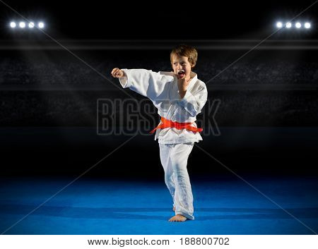 Little boy martial arts fighter at sports hall