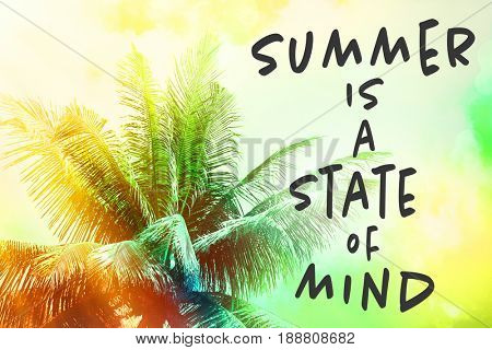 Text SUMMER IS A STATE OF MIND and palm tree on colorful background