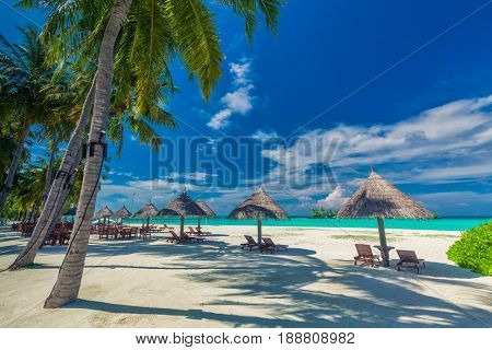 Beach chairs under umrellas and palm trees on a tropical beach, Maldives