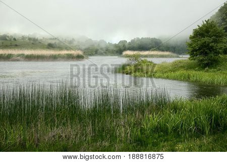 fog on the biviere lake one of the wetland of Nebrodi Park, Sicily