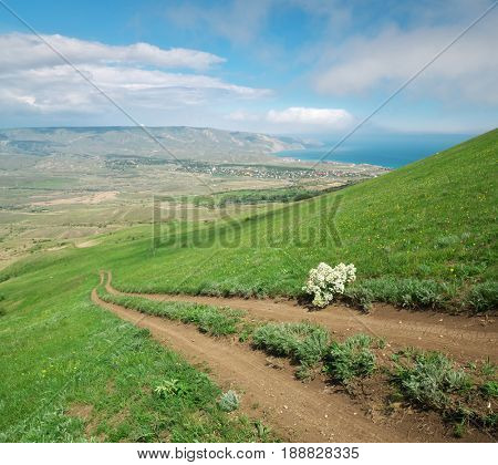 Footpath and green hill of seaside. Nature composition.