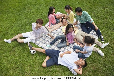 Group of Chinese friends relaxing on picnic blanket