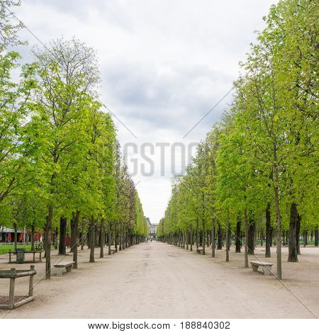 Tuileries garden is a favorite place of tourists and Parisians. Tuileries is a public garden located between the Louvre Museum and the Place de la Concorde