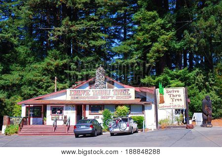 LEGGETT, CALIFORNIA, USA - September 2, 2009: Exterior of the Drive Thru Tree Redwood Gift Shop near Redwood National Park in Northern California