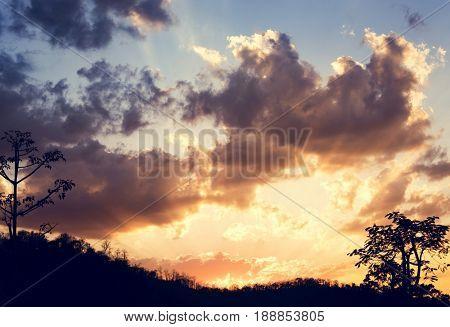 Sunlight with Cloudy Blue Sky Beautiful Scene