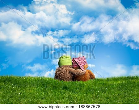 Two embracing Teddy bear sitting back. Green grass blue sky open space. The concept of friendship empathy love