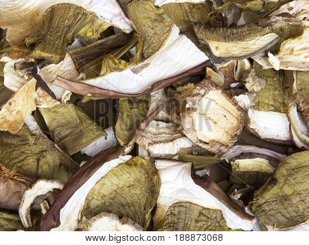 dried porcini mushrooms texture for background, top view