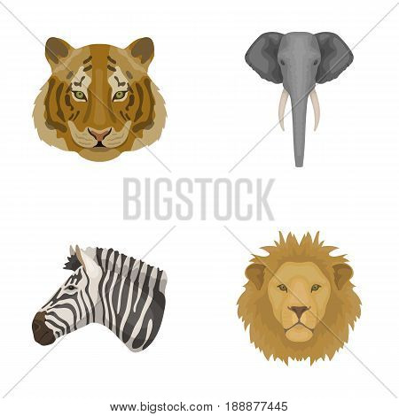 Tiger, lion, elephant, zebra, Realistic animals set collection icons in cartoon style vector symbol stock illustration .