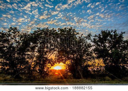 Landscape, sunset in a field with beautiful clouds