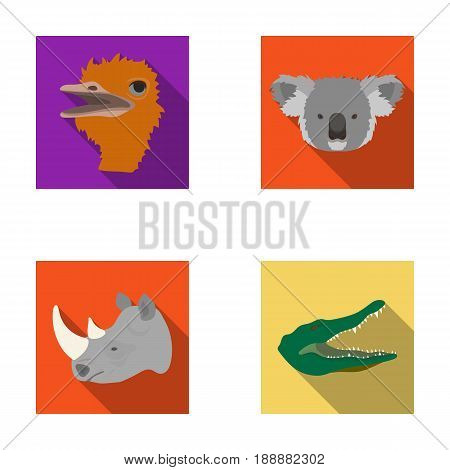 Ostrich, koala, rhinoceros, crocodile, realistic animals set collection icons in flat style vector symbol stock illustration .