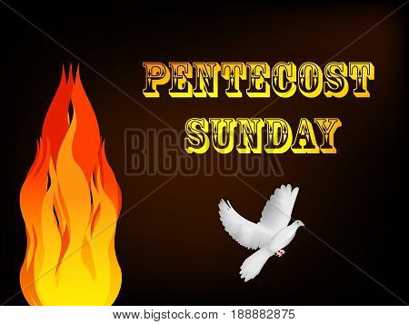 illustration of pigeon and fire with Pentecost Sunday text