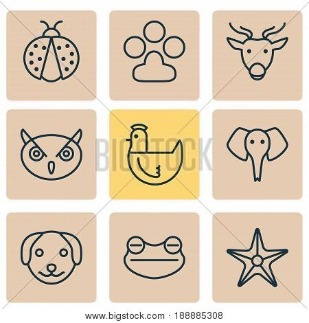 Nature Icons Set. Collection Of Night Fowl, Ladybird, Hen And Other Elements. Also Includes Symbols Such As Toad, Poultry, Owl.