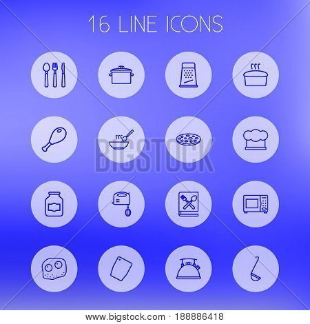 Set Of 16 Cooking Outline Icons Set.Collection Of Kettle, Chicken Leg, Microwave And Other Elements.