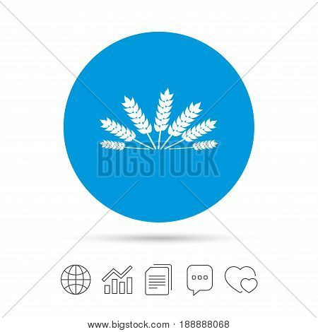Agricultural sign icon. Wheat corn. Gluten free or No gluten symbol. Copy files, chat speech bubble and chart web icons. Vector