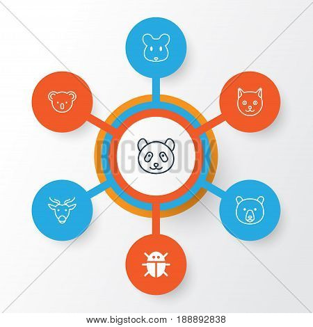 Animal Icons Set. Collection Of Marsupial, Beetle, Bear And Other Elements. Also Includes Symbols Such As Bear, Panda, Deer.