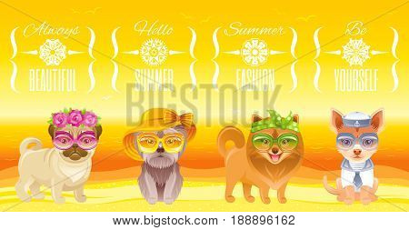 Summer fashion puppy dog icon set in sweet retro clothes. Terrier, pomeranian spitz, chihuahua, pug breed. Cartoon vintage vector illustration isolated white background. Text lettering pet logo